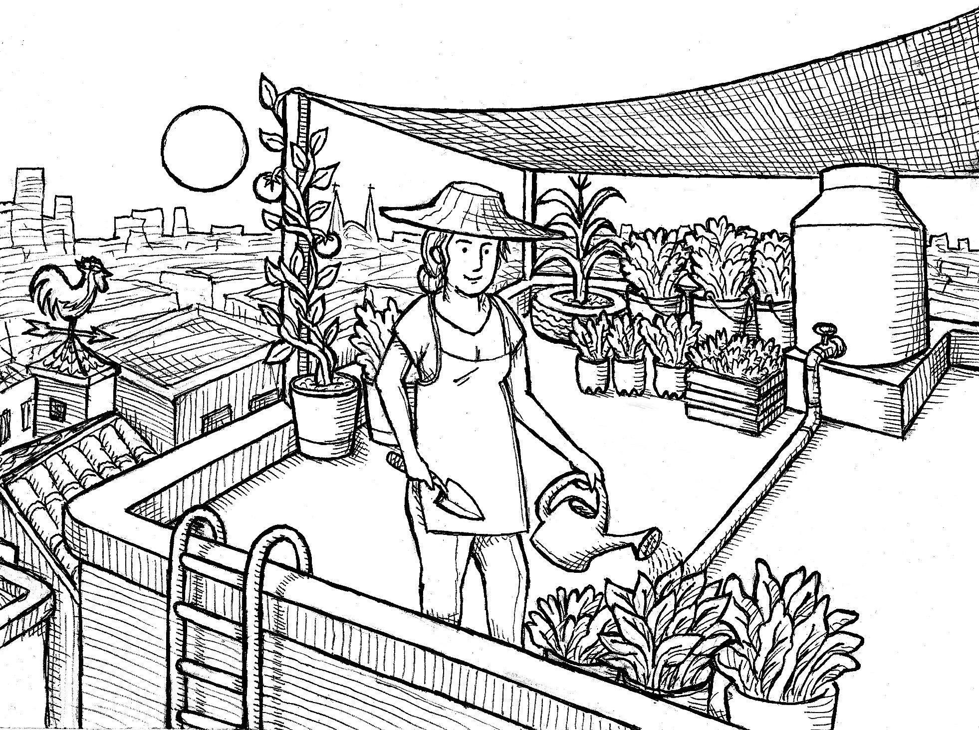 Iniciando un huerto en casa azoteas verdes for Fabricacion de viveros